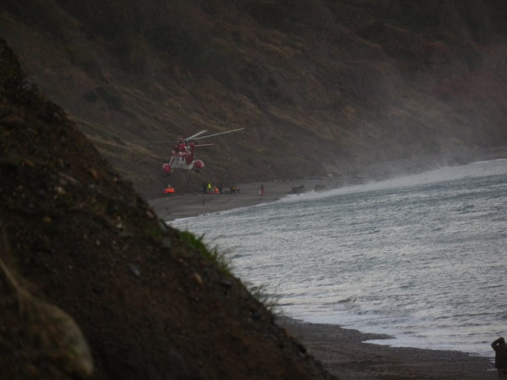Rescue teams working on Greystones beach this morning