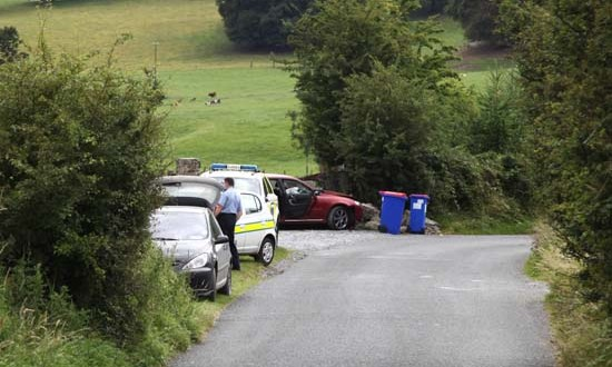 The scene where the raiders crashed their getaway car at Plezica close to Dunlavin.