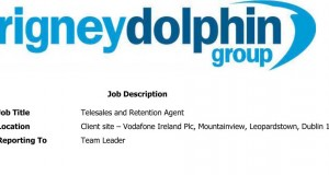 Telesales and Retention Agent-3