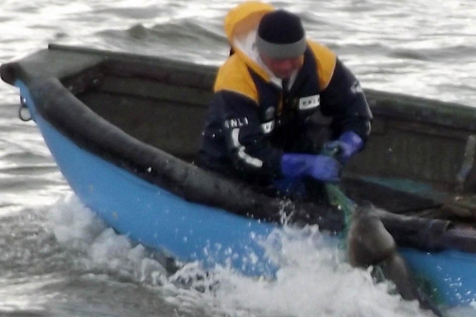 Seal Rescue 2